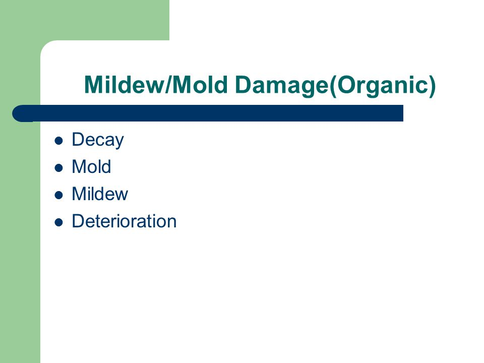 Mildew/Mold Damage(Organic) Decay Mold Mildew Deterioration