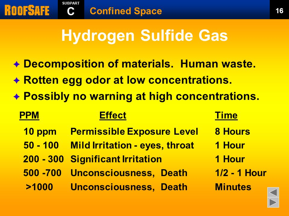 Hydrogen Sulfide Gas  Decomposition of materials. Human waste.  Rotten egg odor at low concentrations.  Possibly no warning at high concentrations.