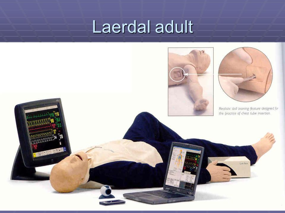 Laerdal adult