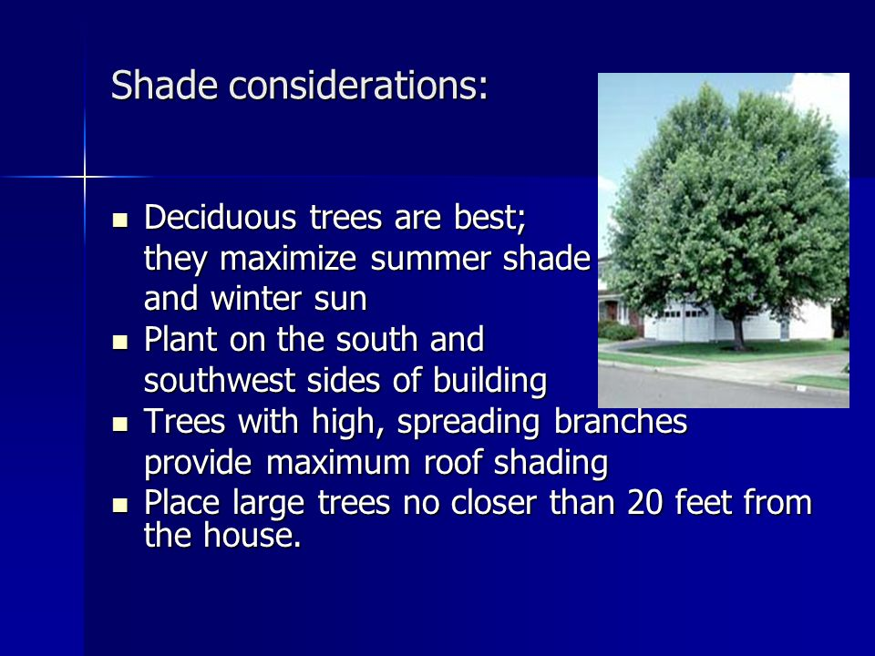 Shade considerations: Deciduous trees are best; Deciduous trees are best; they maximize summer shade and winter sun Plant on the south and Plant on the south and southwest sides of building Trees with high, spreading branches Trees with high, spreading branches provide maximum roof shading Place large trees no closer than 20 feet from the house.