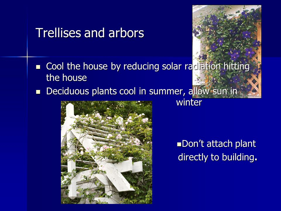 Trellises and arbors Cool the house by reducing solar radiation hitting the house Cool the house by reducing solar radiation hitting the house Deciduous plants cool in summer, allow sun in winter Deciduous plants cool in summer, allow sun in winter Don't attach plant Don't attach plant directly to building.