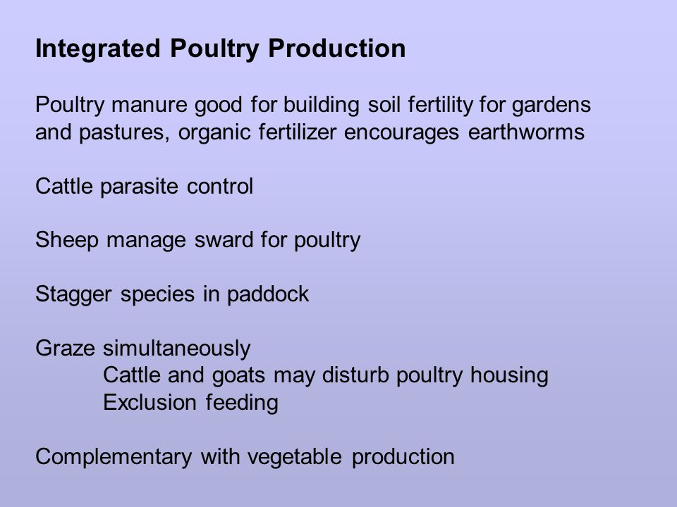 Integrated Poultry Production Poultry manure good for building soil fertility for gardens and pastures, organic fertilizer encourages earthworms Cattle parasite control Sheep manage sward for poultry Stagger species in paddock Graze simultaneously Cattle and goats may disturb poultry housing Exclusion feeding Complementary with vegetable production