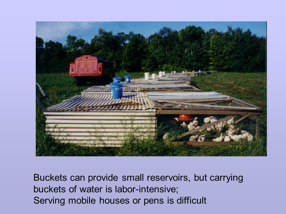Buckets can provide small reservoirs, but carrying buckets of water is labor-intensive; Serving mobile houses or pens is difficult
