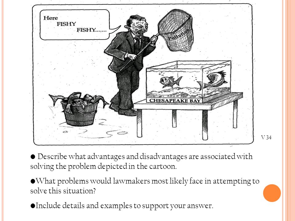 V 34 Describe what advantages and disadvantages are associated with solving the problem depicted in the cartoon. What problems would lawmakers most li