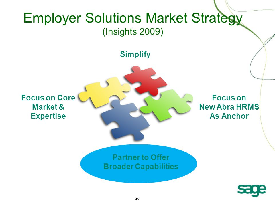 45 Focus on New Abra HRMS As Anchor Focus on Core Market & Expertise Simplify Partner to Offer Broader Capabilities Employer Solutions Market Strategy (Insights 2009)