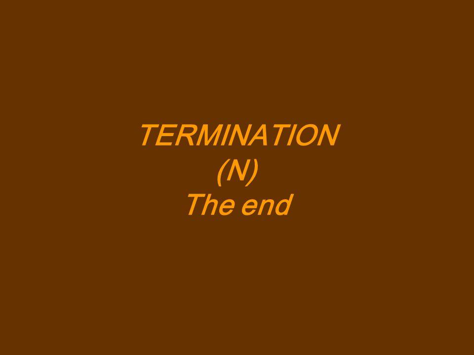TERMINATION (N) The end