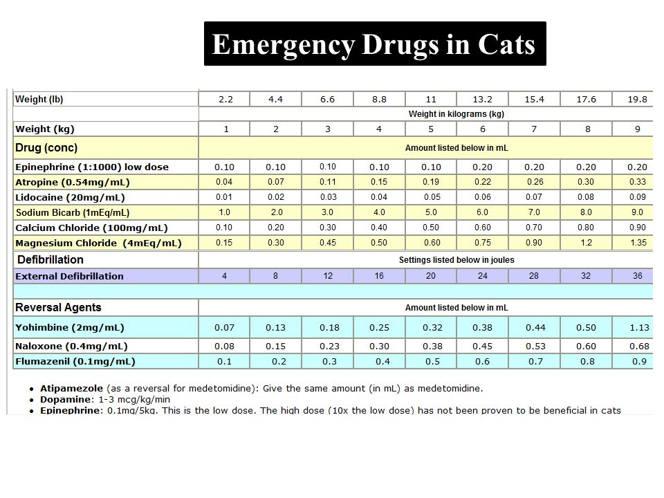 Emergency Drugs in Cats