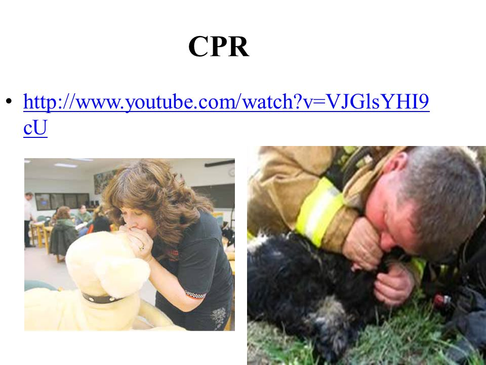 CPR http://www.youtube.com/watch v=VJGlsYHI9 cU http://www.youtube.com/watch v=VJGlsYHI9 cU