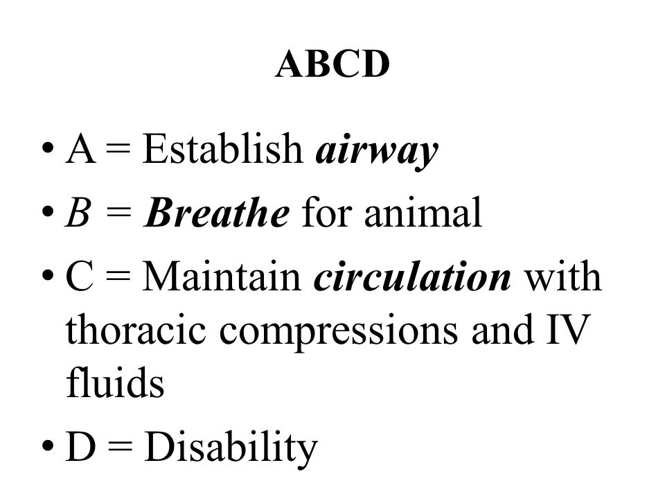 Basic Life Support (Phase I) – Circulation External cardiac compression – Lateral recumbency—one/both hands on thorax over heart (4 th -5 th intercostal space) – In larger patients, arms extended, elbows locked – In small patients, thumb and first 2 fingers to compress chest – Rate of compression: 80-120/min Cardiopulmonary Resuscitation