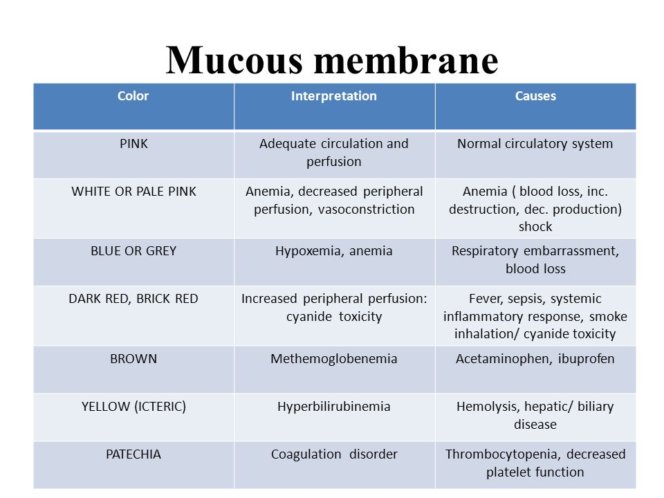 Mucous membrane ColorInterpretationCauses PINKAdequate circulation and perfusion Normal circulatory system WHITE OR PALE PINKAnemia, decreased peripheral perfusion, vasoconstriction Anemia ( blood loss, inc.