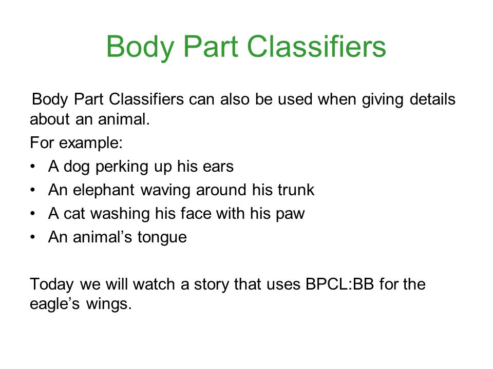 Body Part Classifiers Body Part Classifiers can also be used when giving details about an animal.