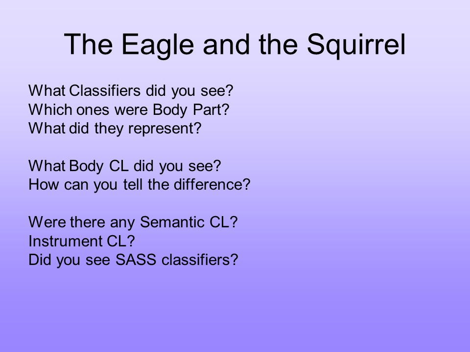 The Eagle and the Squirrel What Classifiers did you see.