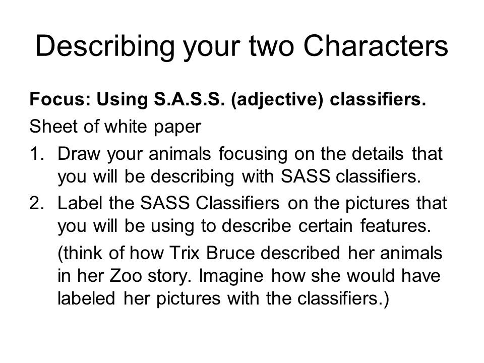 Describing your two Characters Focus: Using S.A.S.S.
