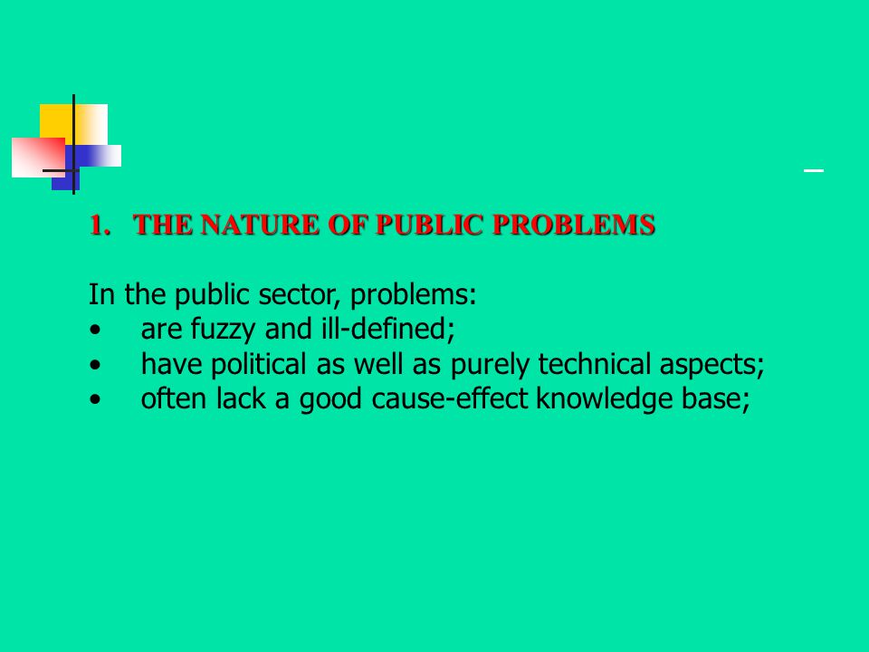 1.THE NATURE OF PUBLIC PROBLEMS In the public sector, problems: are fuzzy and ill-defined; have political as well as purely technical aspects; often l
