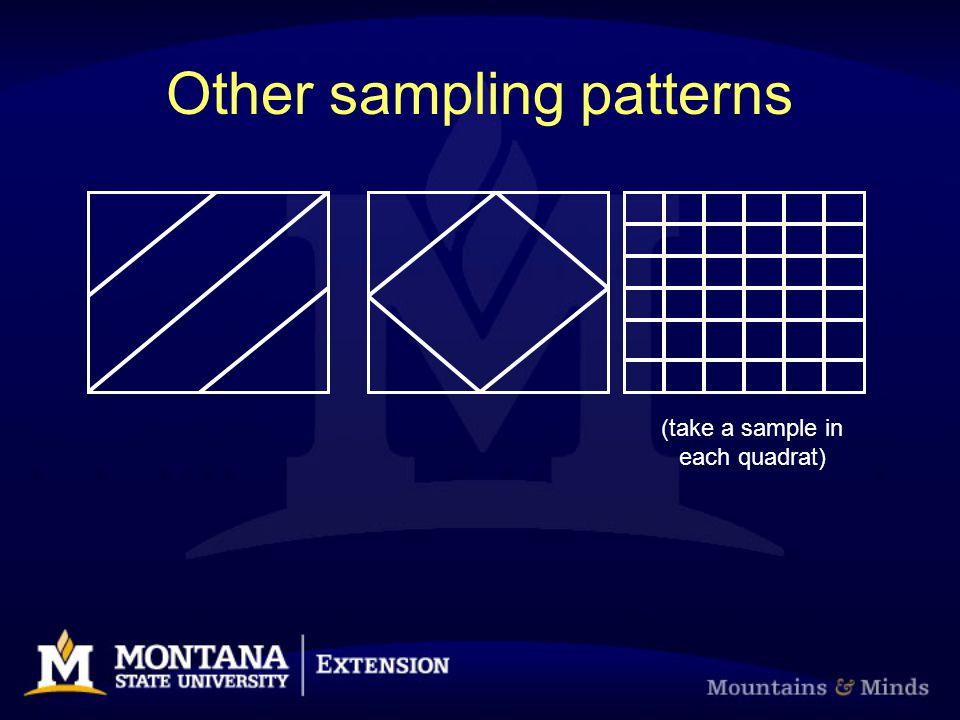 Other sampling patterns (take a sample in each quadrat)