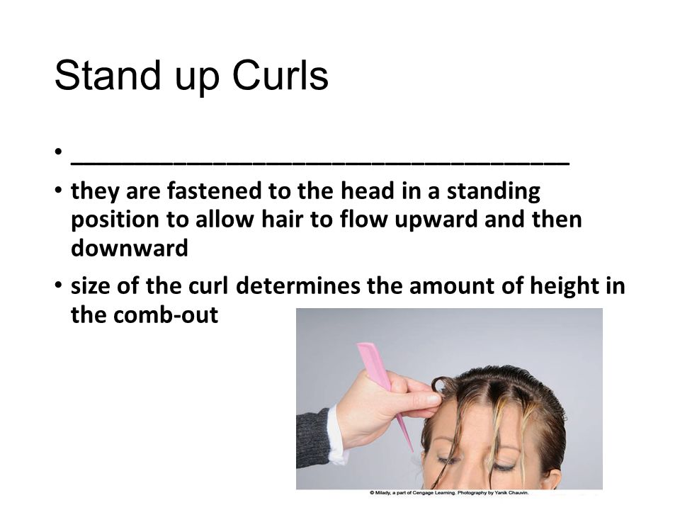 Stand up Curls ______________________________________ they are fastened to the head in a standing position to allow hair to flow upward and then downw