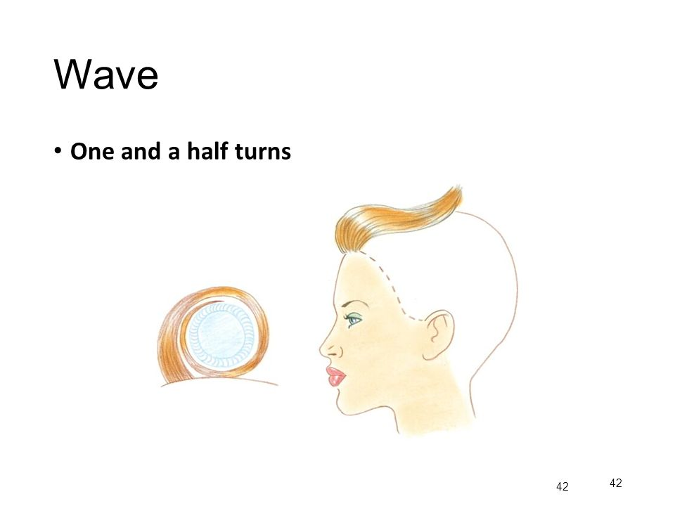 Wave One and a half turns 42
