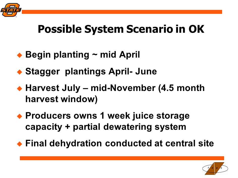 Possible System Scenario in OK  Begin planting ~ mid April  Stagger plantings April- June  Harvest July – mid-November (4.5 month harvest window)  Producers owns 1 week juice storage capacity + partial dewatering system  Final dehydration conducted at central site