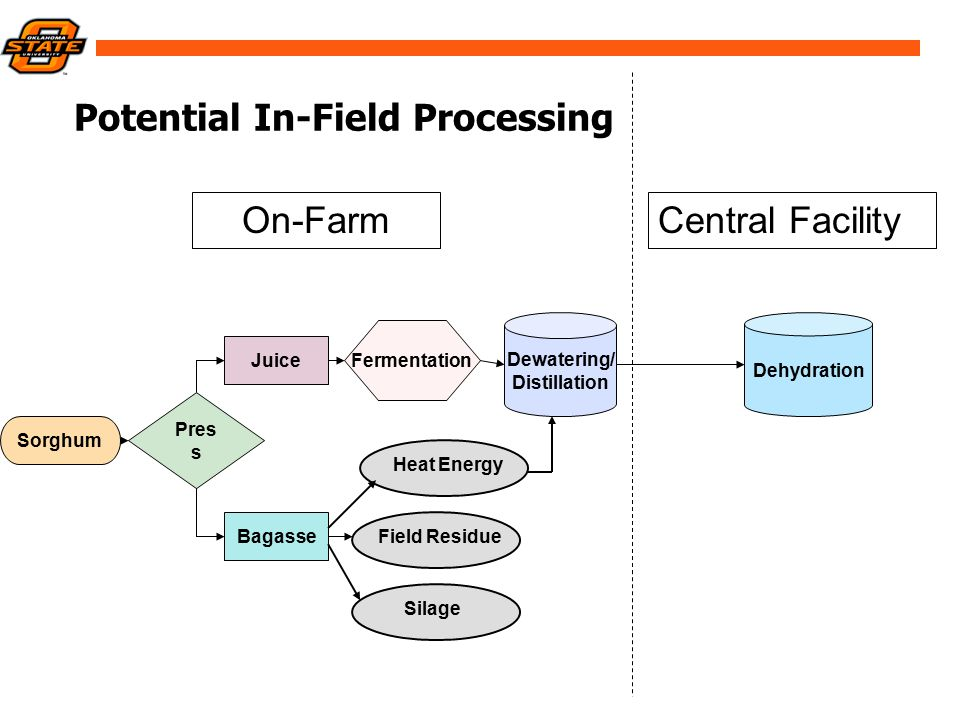 Potential In-Field Processing Sorghum Pres s Juice Bagasse Fermentation Dewatering/ Distillation Dehydration Central FacilityOn-Farm Field Residue Silage Heat Energy