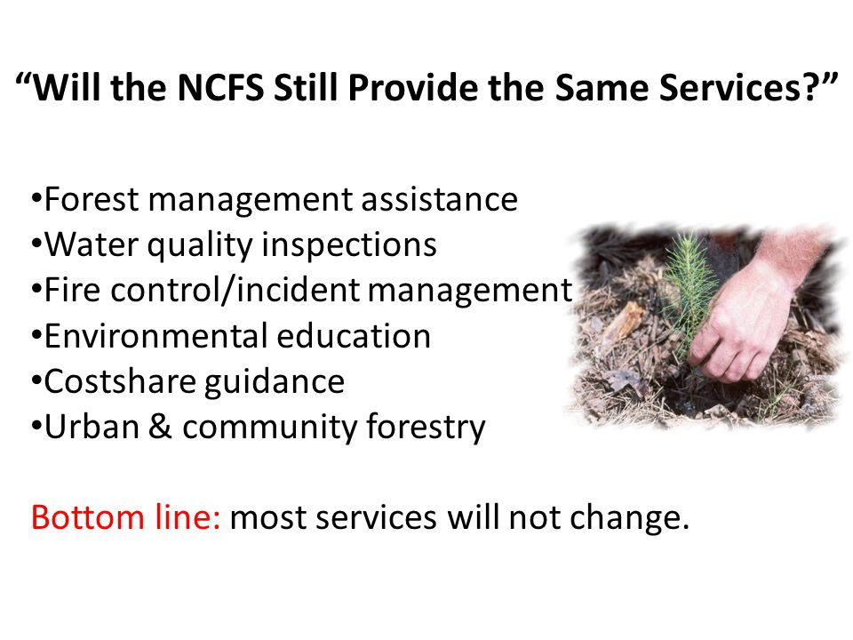 NCFS Providing Forest Management Plans Landowner-objective driven Statewide staffing levels Management plans vs.