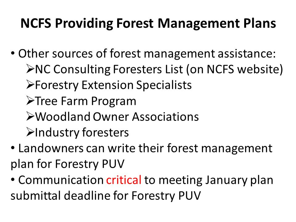 Other sources of forest management assistance:  NC Consulting Foresters List (on NCFS website)  Forestry Extension Specialists  Tree Farm Program  Woodland Owner Associations  Industry foresters Landowners can write their forest management plan for Forestry PUV Communication critical to meeting January plan submittal deadline for Forestry PUV NCFS Providing Forest Management Plans