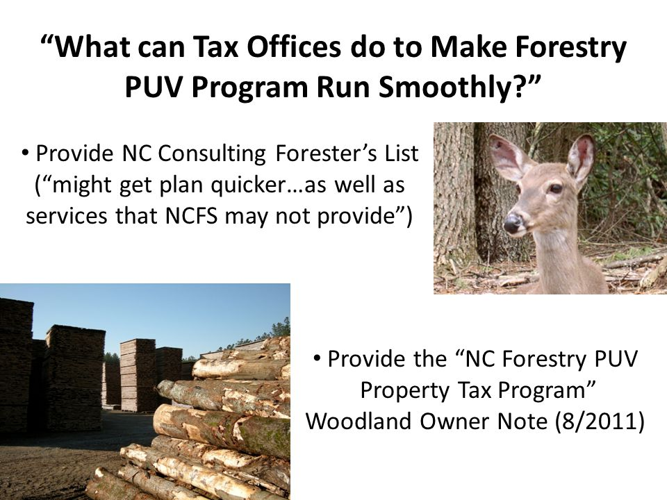 What can Tax Offices do to Make Forestry PUV Program Run Smoothly Provide the NC Forestry PUV Property Tax Program Woodland Owner Note (8/2011) Provide NC Consulting Forester's List ( might get plan quicker…as well as services that NCFS may not provide )