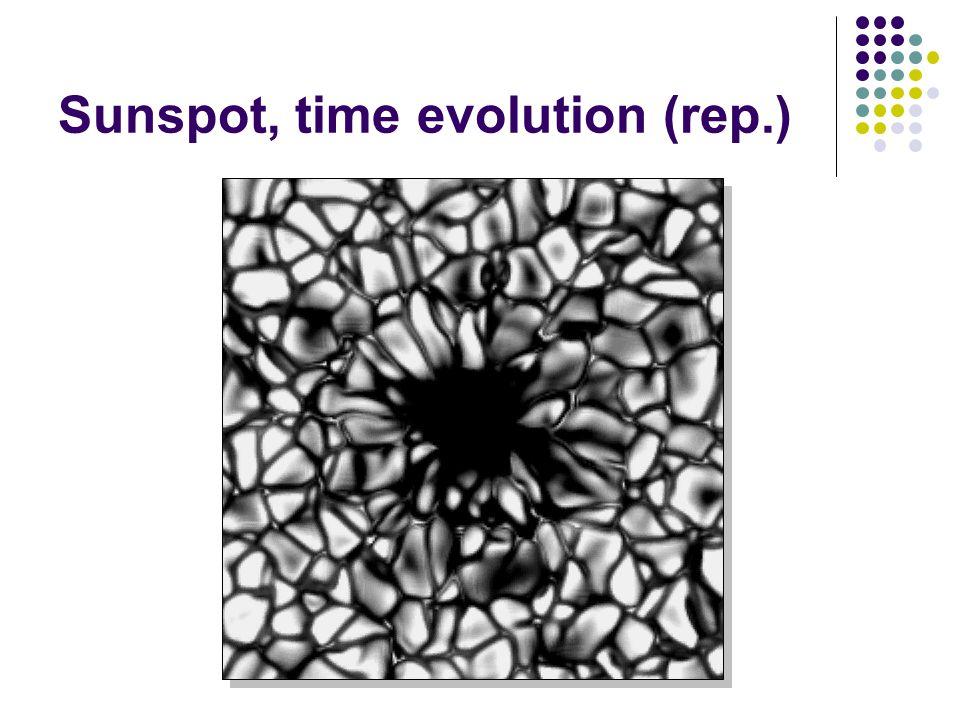 Sunspot, time evolution (rep.)