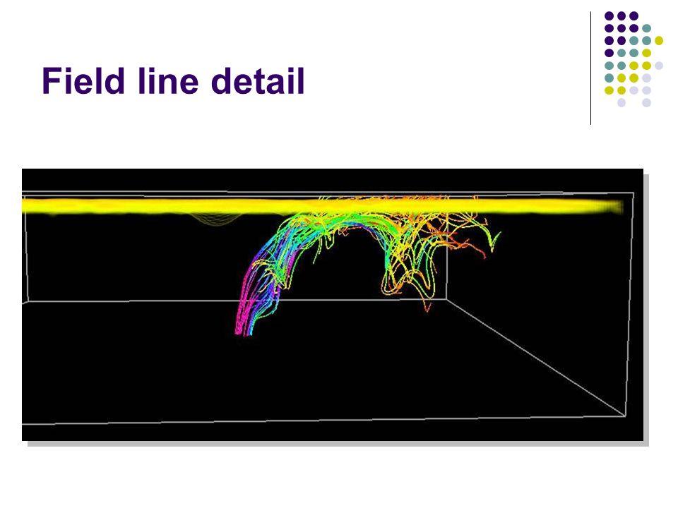 Field line detail