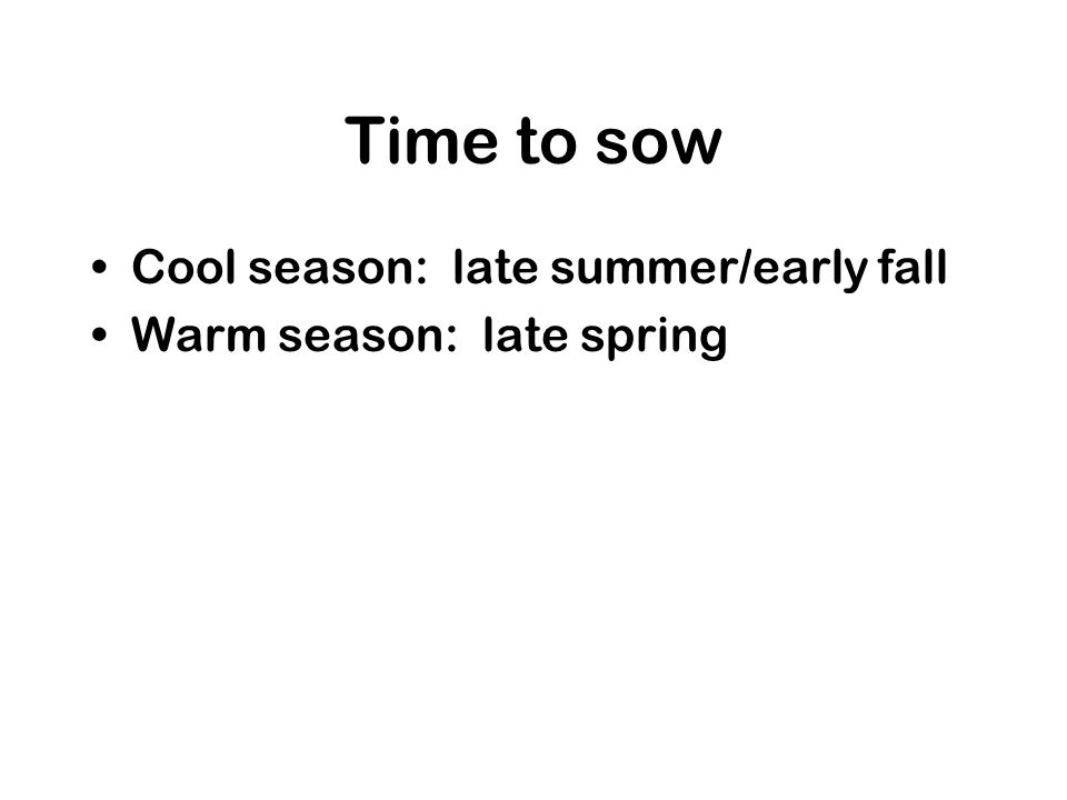 Time to sow Cool season: late summer/early fall Warm season: late spring