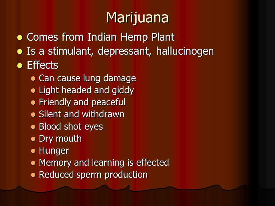 Marijuana Comes from Indian Hemp Plant Comes from Indian Hemp Plant Is a stimulant, depressant, hallucinogen Is a stimulant, depressant, hallucinogen Effects Effects Can cause lung damage Can cause lung damage Light headed and giddy Light headed and giddy Friendly and peaceful Friendly and peaceful Silent and withdrawn Silent and withdrawn Blood shot eyes Blood shot eyes Dry mouth Dry mouth Hunger Hunger Memory and learning is effected Memory and learning is effected Reduced sperm production Reduced sperm production