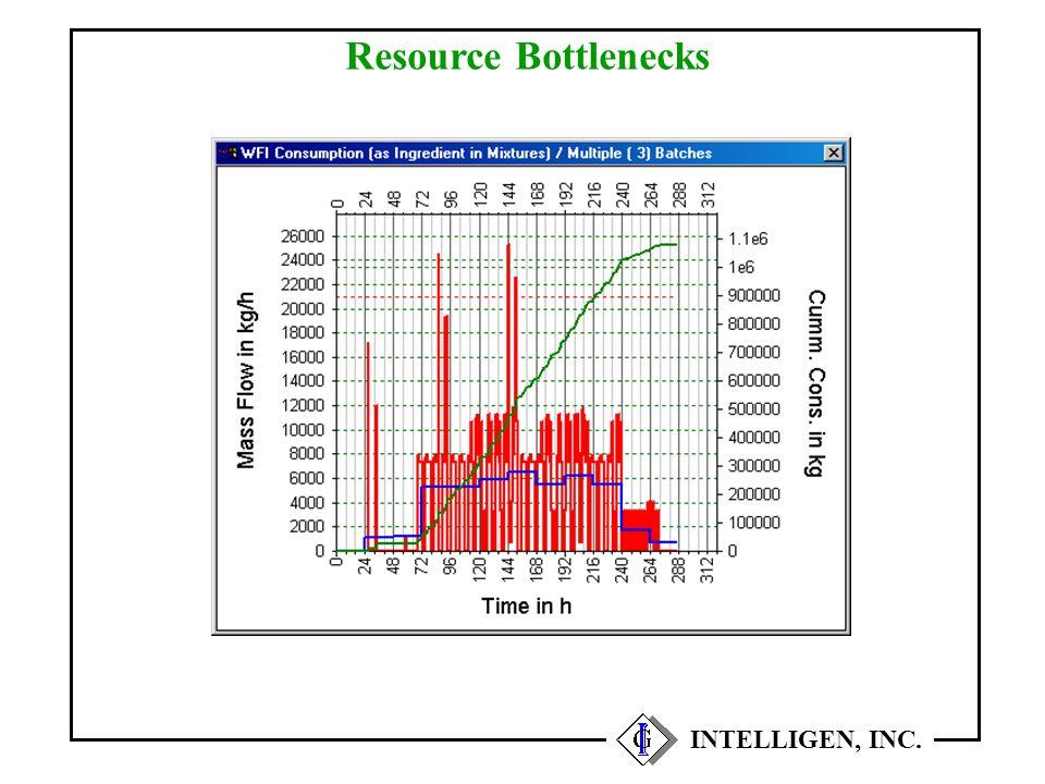 Resource Bottlenecks INTELLIGEN, INC.