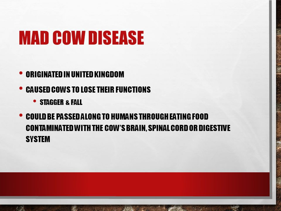 MAD COW DISEASE ORIGINATED IN UNITED KINGDOM CAUSED COWS TO LOSE THEIR FUNCTIONS STAGGER & FALL COULD BE PASSED ALONG TO HUMANS THROUGH EATING FOOD CONTAMINATED WITH THE COW'S BRAIN, SPINAL CORD OR DIGESTIVE SYSTEM