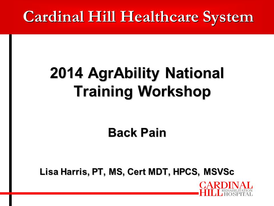 Cardinal Hill Healthcare System 2014 AgrAbility National Training Workshop Back Pain Lisa Harris, PT, MS, Cert MDT, HPCS, MSVSc