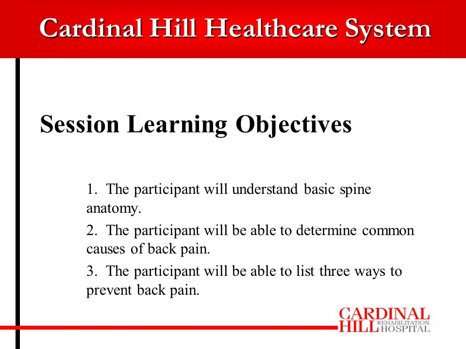 Cardinal Hill Healthcare System Basic Anatomy Vertebral body Spinous process Disc Facet joints Spinal canal Nerves