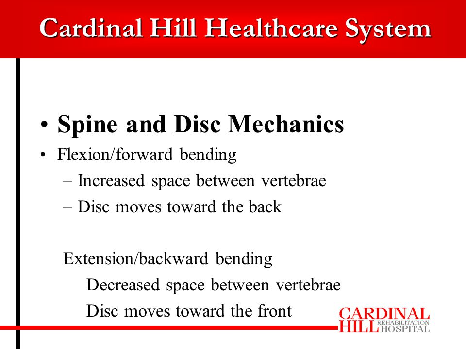 Cardinal Hill Healthcare System Spine and Disc Mechanics Flexion/forward bending –Increased space between vertebrae –Disc moves toward the back Extension/backward bending Decreased space between vertebrae Disc moves toward the front