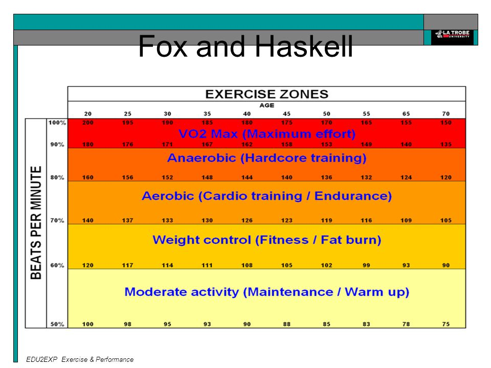 EDU2EXP Exercise & Performance Fox and Haskell