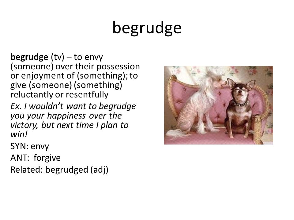 begrudge begrudge (tv) – to envy (someone) over their possession or enjoyment of (something); to give (someone) (something) reluctantly or resentfully