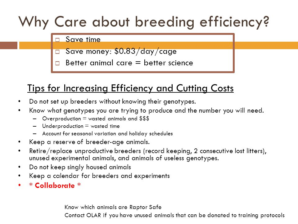 Why Care about breeding efficiency.
