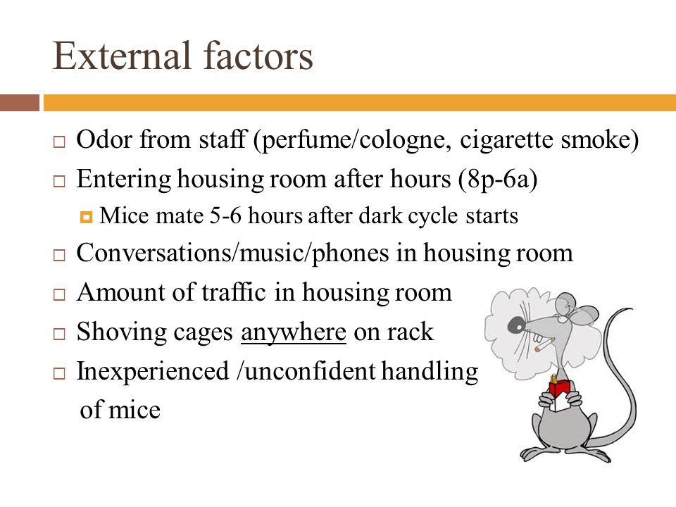 External factors  Odor from staff (perfume/cologne, cigarette smoke)  Entering housing room after hours (8p-6a)  Mice mate 5-6 hours after dark cycle starts  Conversations/music/phones in housing room  Amount of traffic in housing room  Shoving cages anywhere on rack  Inexperienced /unconfident handling of mice
