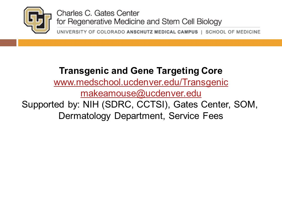 Transgenic and Gene Targeting Core www.medschool.ucdenver.edu/Transgenic makeamouse@ucdenver.edu Supported by: NIH (SDRC, CCTSI), Gates Center, SOM, Dermatology Department, Service Fees