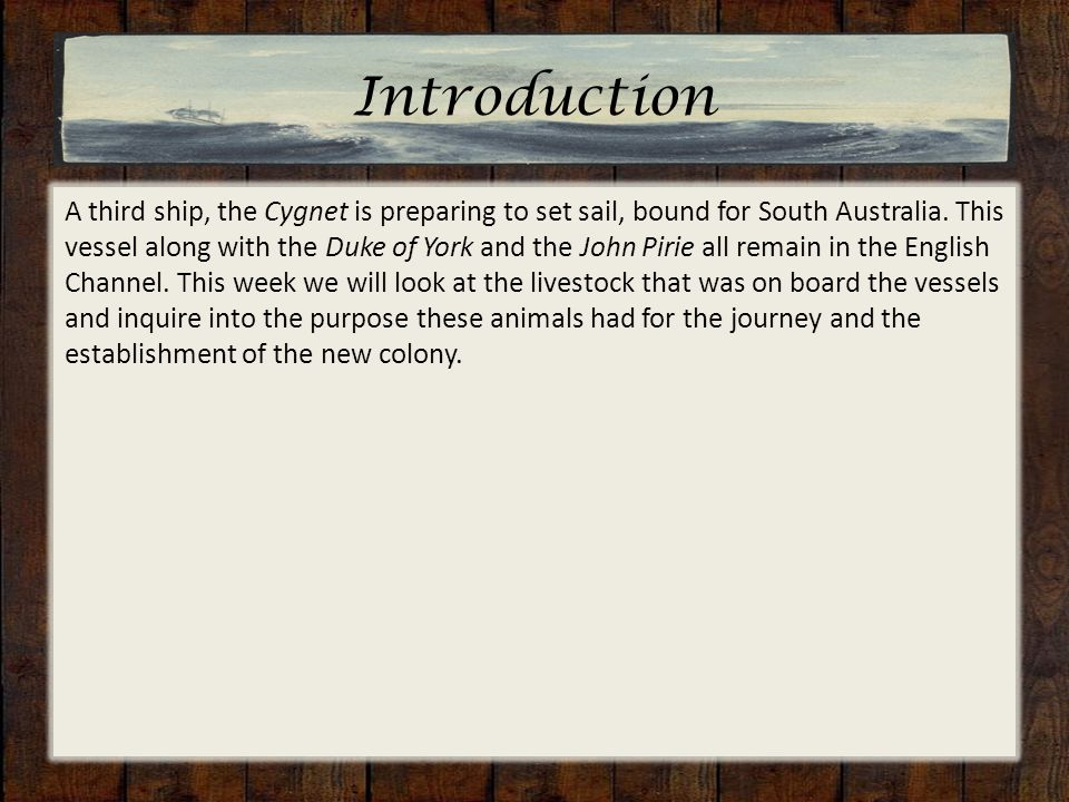 Introduction A third ship, the Cygnet is preparing to set sail, bound for South Australia.