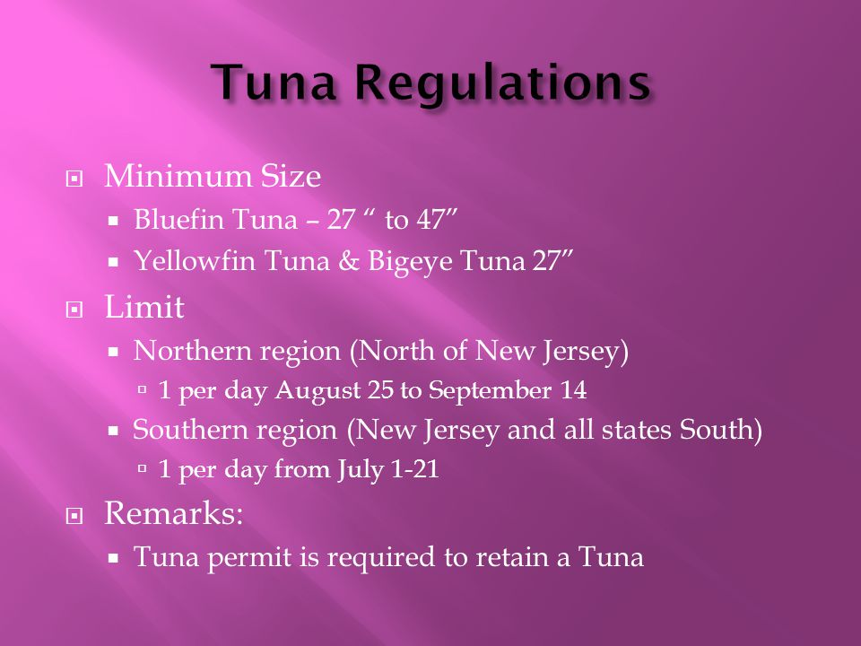  Minimum Size  Bluefin Tuna – 27 to 47  Yellowfin Tuna & Bigeye Tuna 27  Limit  Northern region (North of New Jersey)  1 per day August 25 to September 14  Southern region (New Jersey and all states South)  1 per day from July 1-21  Remarks:  Tuna permit is required to retain a Tuna