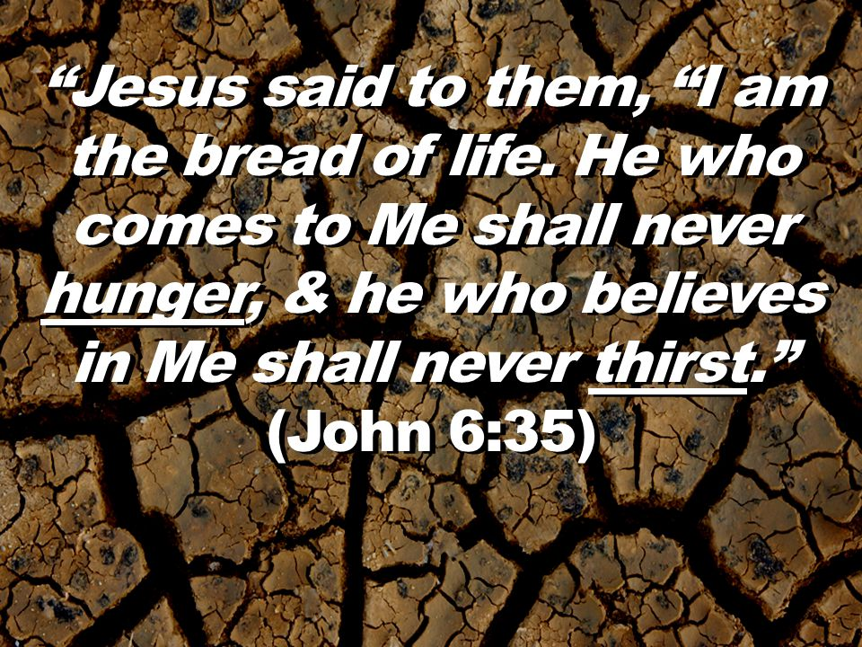 Jesus said to them, I am the bread of life.