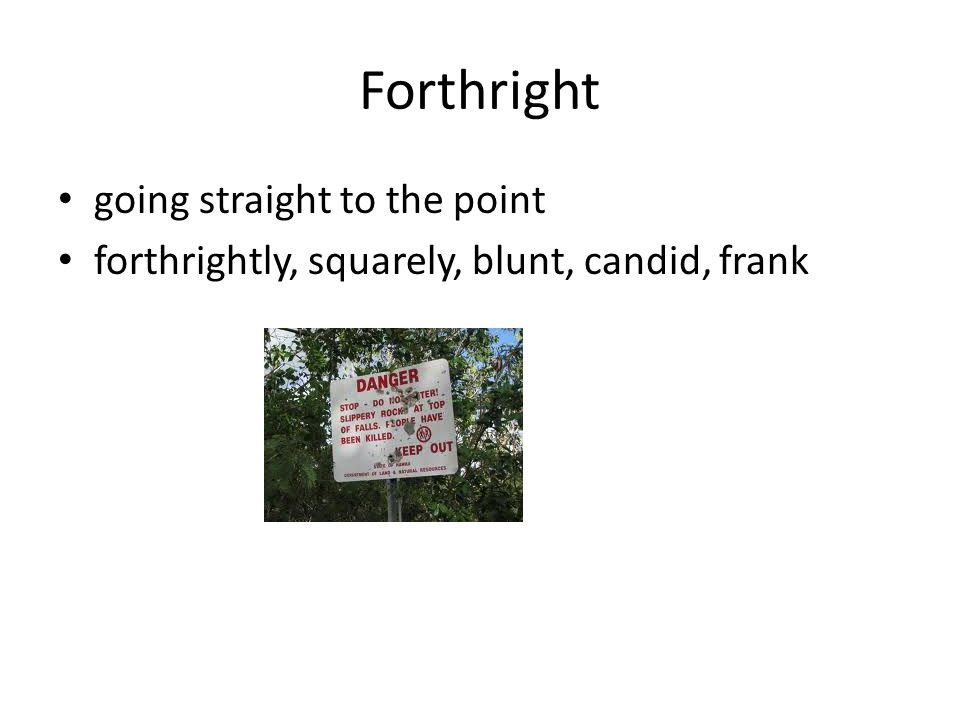 Forthright going straight to the point forthrightly, squarely, blunt, candid, frank