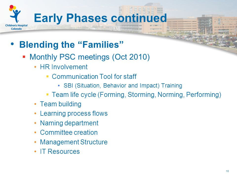 Early Phases continued Blending the Families  Monthly PSC meetings (Oct 2010) HR Involvement  Communication Tool for staff SBI (Situation, Behavior and Impact) Training  Team life cycle (Forming, Storming, Norming, Performing) Team building Learning process flows Naming department Committee creation Management Structure IT Resources 16