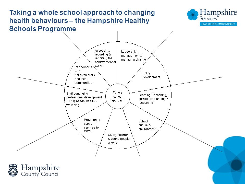 Taking a whole school approach to changing health behaviours – the Hampshire Healthy Schools Programme