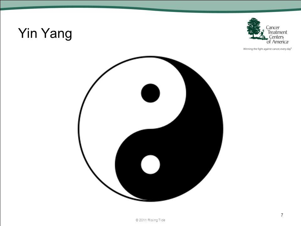 Yin Yang © 2011 Rising Tide 7