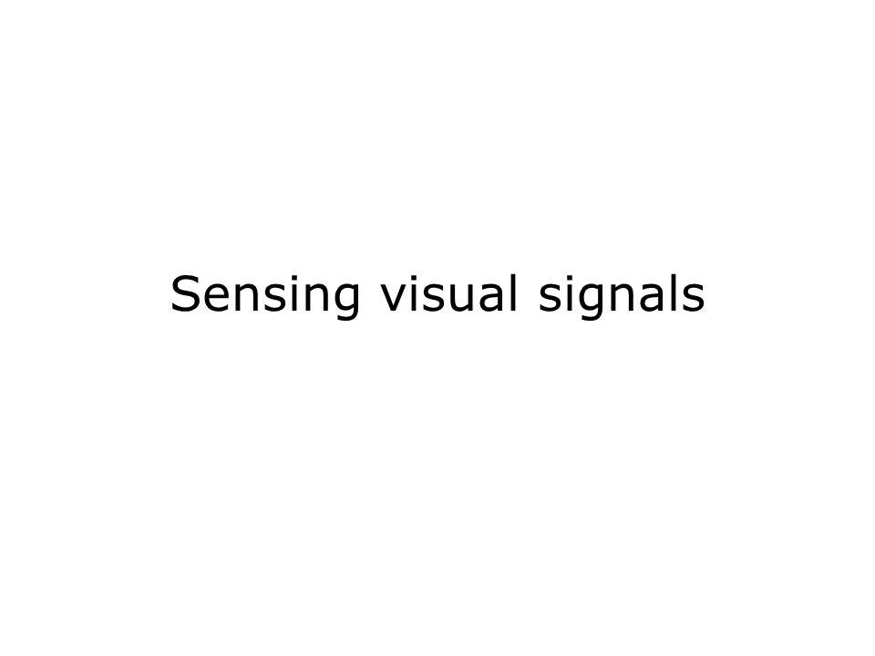 Sensing visual signals