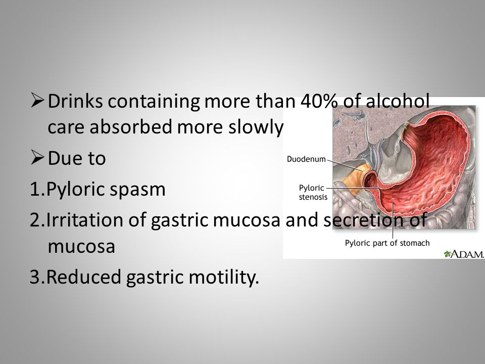  Drinks containing more than 40% of alcohol care absorbed more slowly  Due to 1.Pyloric spasm 2.Irritation of gastric mucosa and secretion of mucosa