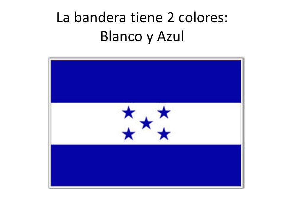 La bandera tiene 2 colores: Blanco y Azul